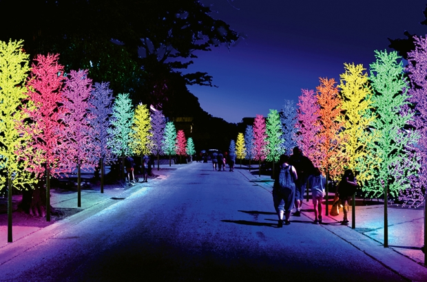 Best Christmas Lights To Buy