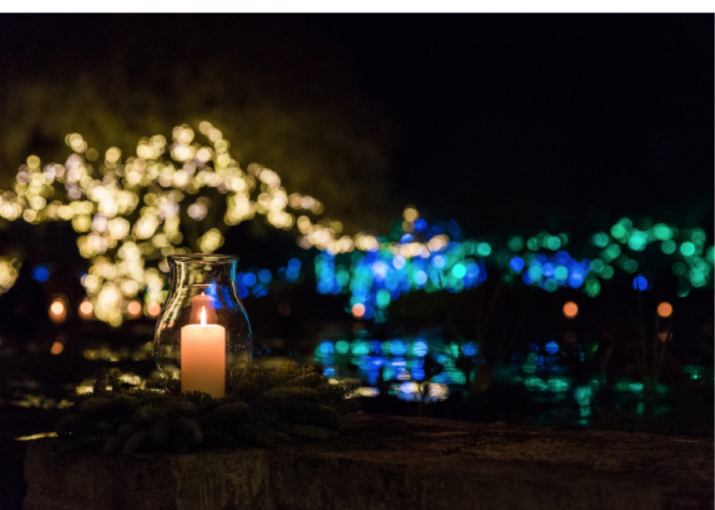 Candlelight by Ben Coy, Brookegreen Gardens, Murrells Inlet