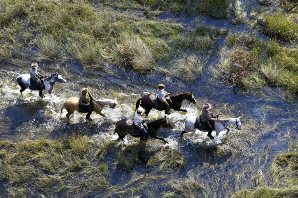 """Leading the Charge: Newman and crew encounter some on-the-job risks while filming """"Equitrekking,"""" like on this episode in Botswana's Okavango Delta that had them narrowly escaping an elephant charge."""