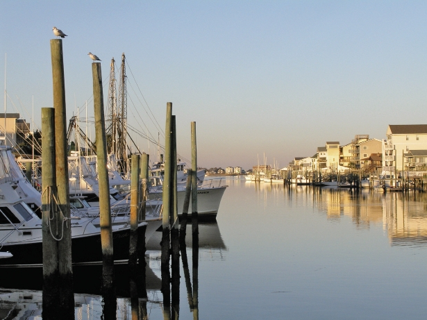 The town of Carolina Beach along Canal Street just south of the park's entrance is peaceful and scenic, dotted with stores and bait shops for any need you may have.