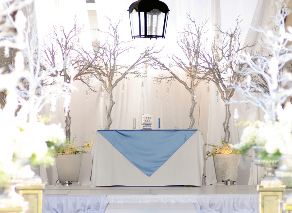Sparkling Water: Diamonds, silver and a color palette of blue streamed throughout the ceremony and reception.