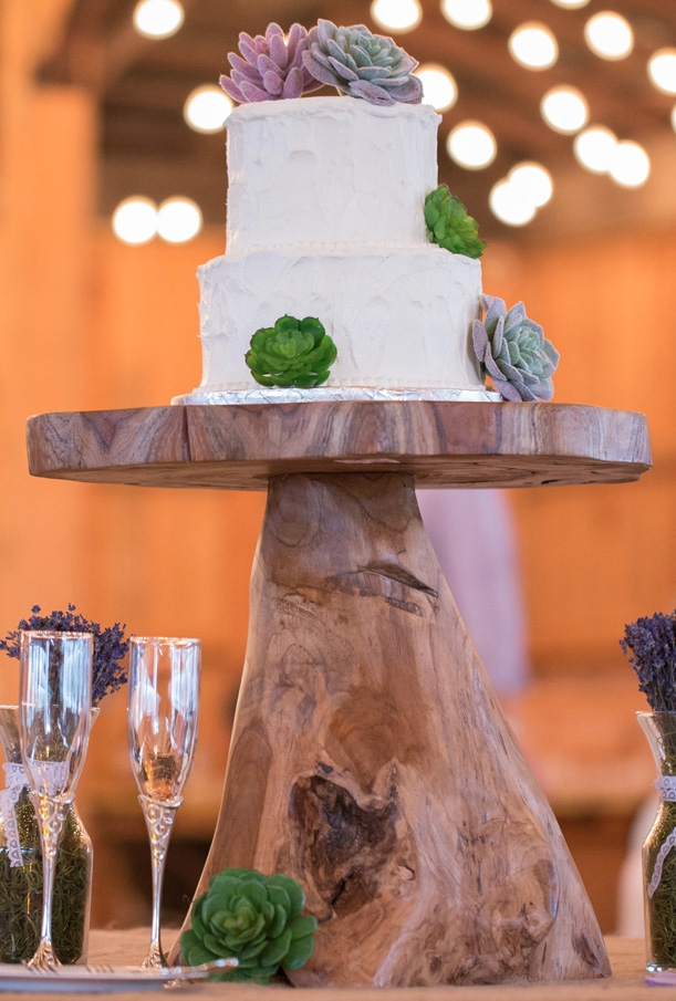 A cake for two was decorated in succulents while the guests chose between strawberry, lemon and peanut butter cupcakes provided by Murray & Mike's Catering.