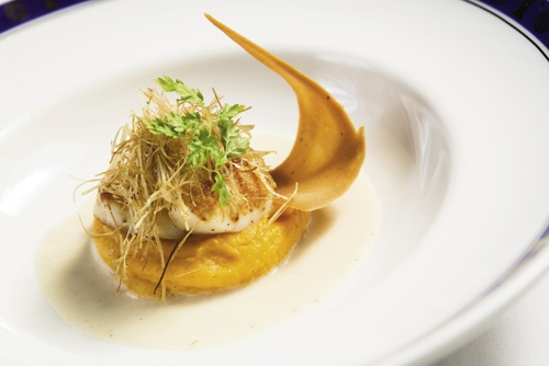 Pan-Seared Day Boat Scallops with Fennel Sauce and Vanilla-Scented Sweet Potato Puree