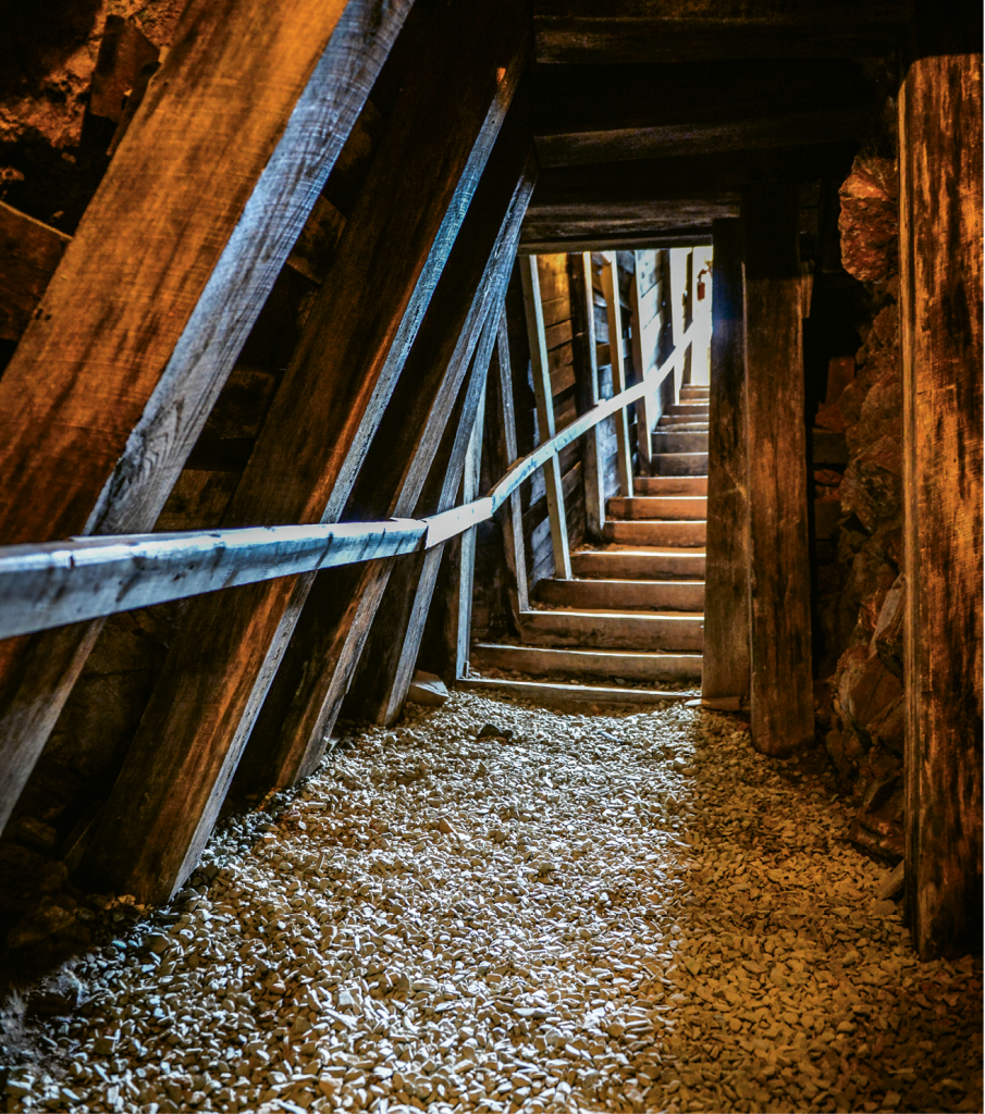 The historic Reed Gold Mine remains a treasure trove of adventure.
