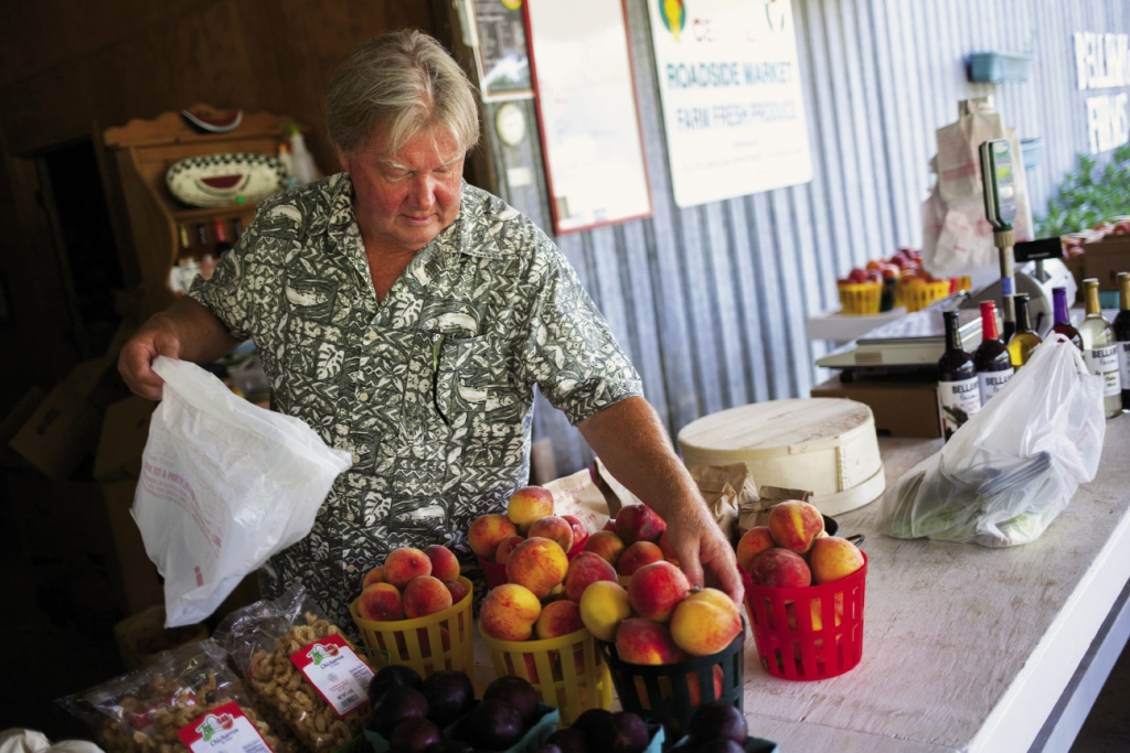 Bellamy Farms: Lyles Bellamy, the owner of the certified Century Farm, Bellamy Farms, hand selects a basket of peaches for a customer.