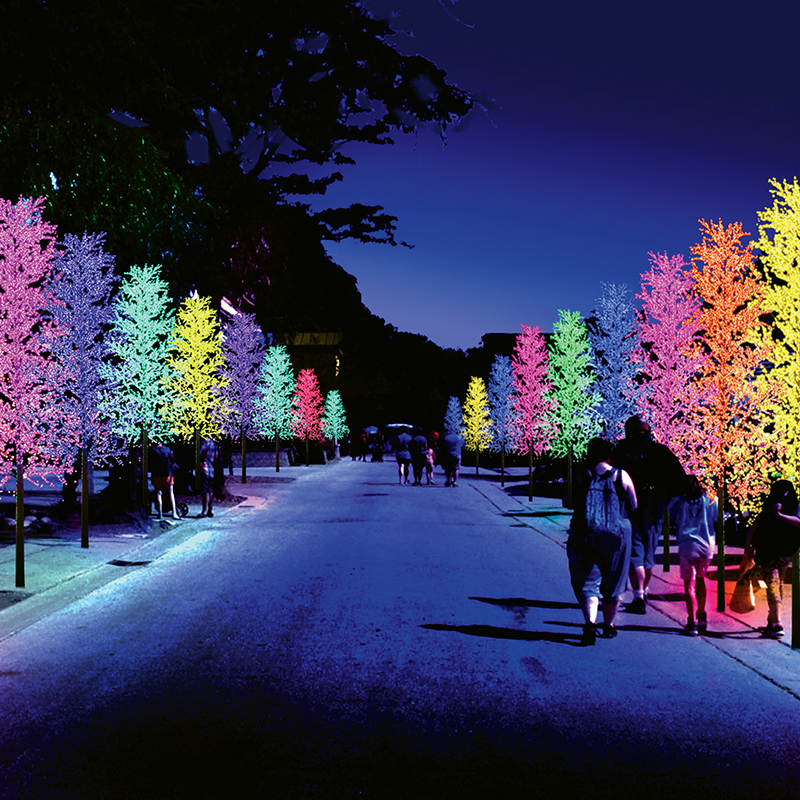 Brookgreen Gardens Myrtle Beach Sc Summer Lights Festival Grand Strand Magazine