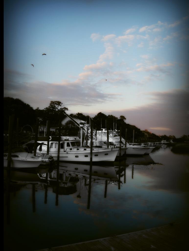 Inlet Reflection  Photographer: Courtney J. Stone-Moore  Where: Murrells Inlet MarshWalk