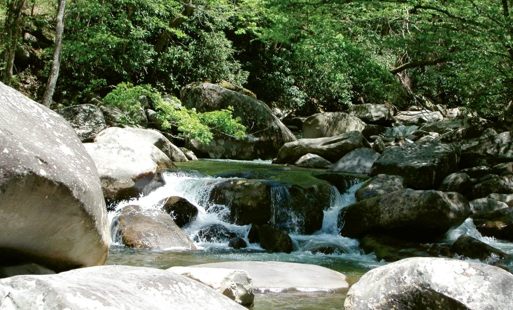 With more than 100 waterfalls and cascades, Great Smoky Mountains National Park offers dazzling views on every trail.