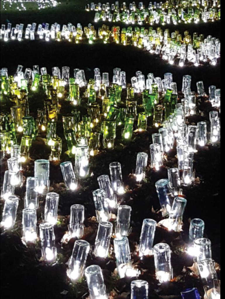 Lighting The Night Melissa Drake Brookgreen Gardens, Murrells Inlet