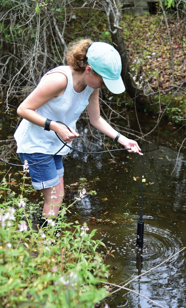 Getting Your Feet Wet: A CCU student takes a water sample for lab analysis.