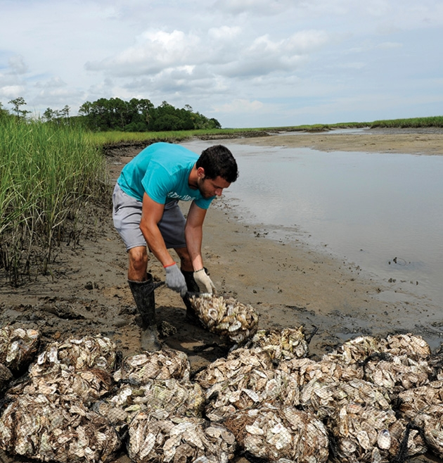 A student works on artificial reefs on Waties Island.