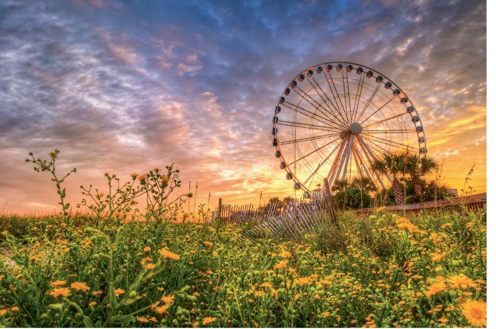 Skywheel sunset  Photographer: Chuck Lawhorn  Where: Myrtle Beach Boardwalk