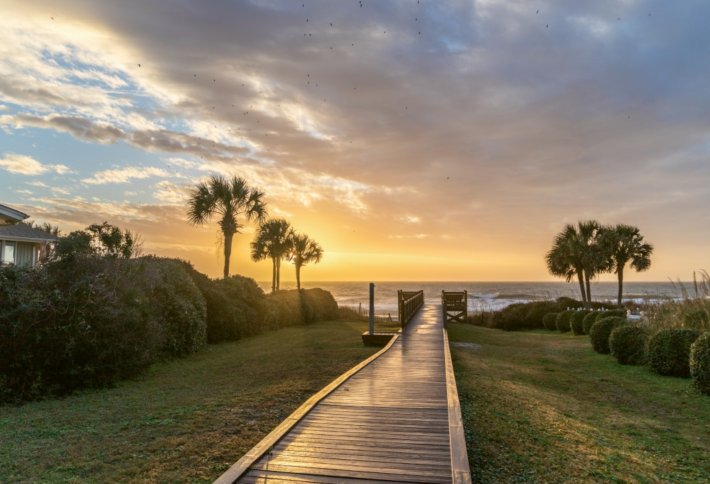 Morning Walk in Paradise - Donald Hovis - 81st Avenue North Beach Access, Myrtle Beach