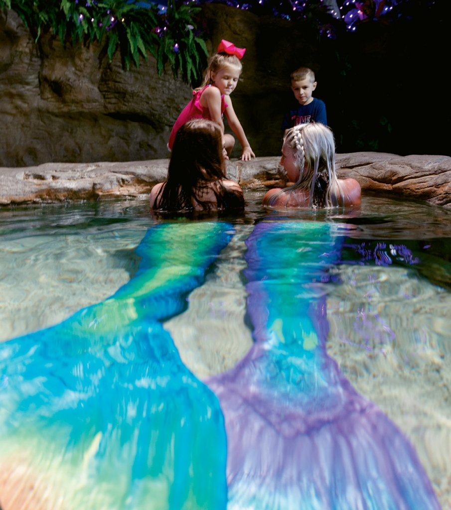 "Mermaids regularly enthrall children with ""tails"" of the sea in the mermaid meet and greet."