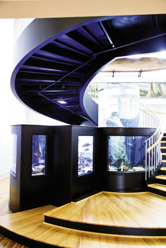 A unique helical staircase surrounds a large aquarium, built and installed by crews from the Tanked television show.