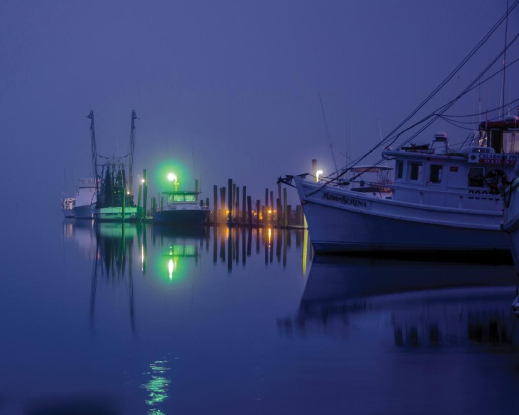 A Foggy Morning in Calabash, Photographer: Mark D. Head, Where: Calabash, North Carolina