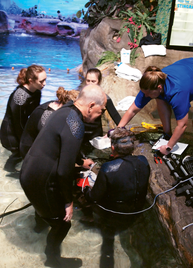 Marine biologists examine a pregnant ray