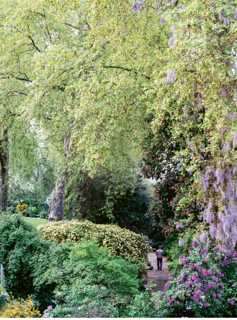 A pathway view of the gardens of Eccleston Square from the Eccleston Square Hotel.