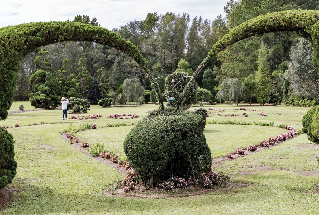 "LOVE SPIRALS ON: Expressions of unity appear throughout the space. One planting spells out ""LOVE, PEACE & GOODWILL."" And by using PVC pipe and wire, Fryar encourages trees and shrubs to grow toward each other. ""I like arches and fountains,"" he says. The double arcs, shown here, help to create a heart shape."