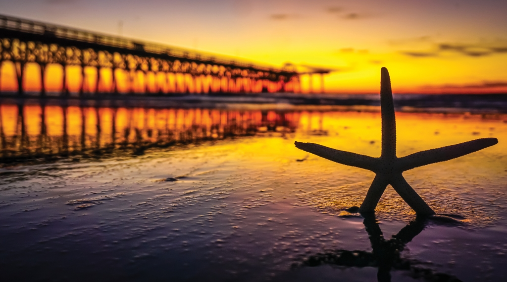 Readers' Choice WINNER! -- Starfish Sunrise - Tommy Cooke - 2nd Avenue Pier, Myrtle Beach