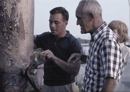 """Ellison Smith IV cutting a piece of the marlin for his father, Judge Ellison Smith III, who said he would """"eat it if they caught one."""""""