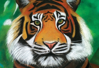 <p><br />Jones chalked this tiger at Nashville's Percy Priest Elementary School in April 2011.</p>