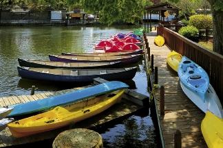 kayaks_canoes.cx_opt.jpeg
